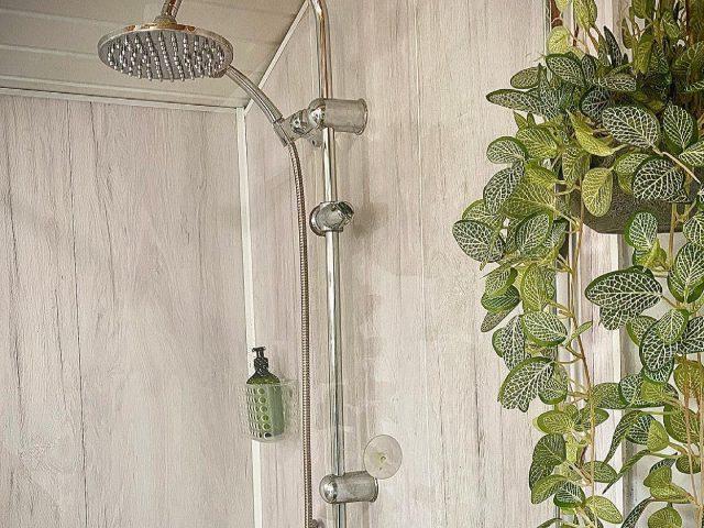 Family shower room rain shower